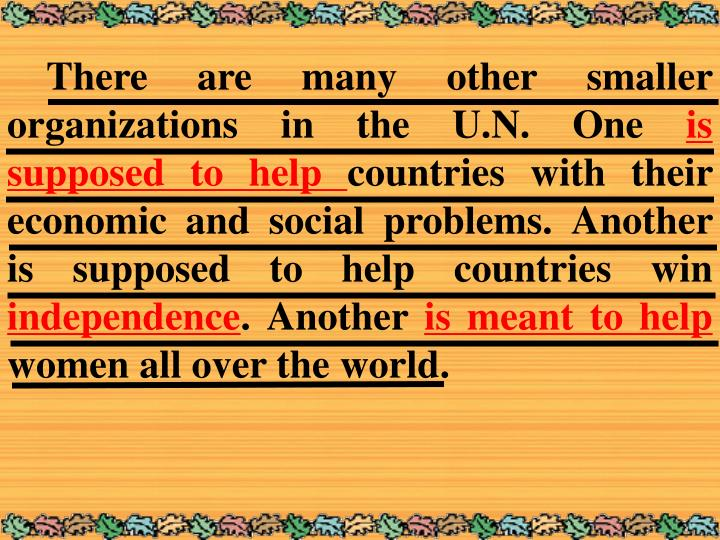 There are many other smaller organizations in the U.N. One