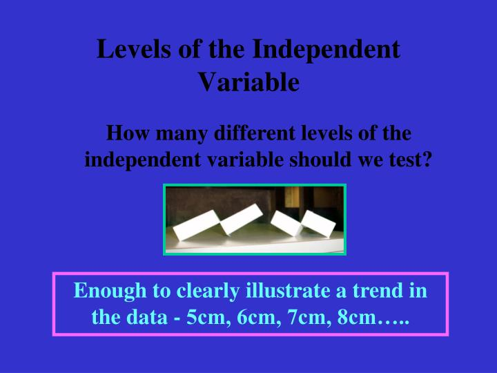Levels of the Independent Variable