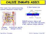 calice inmaps asic1