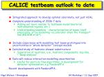 calice testbeam outlook to date