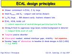 ecal design principles