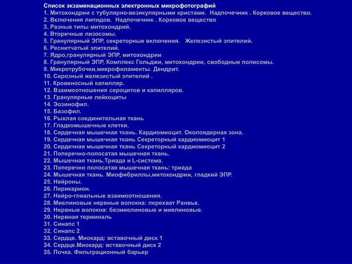 Список экзаменационных электронных микрофотографий