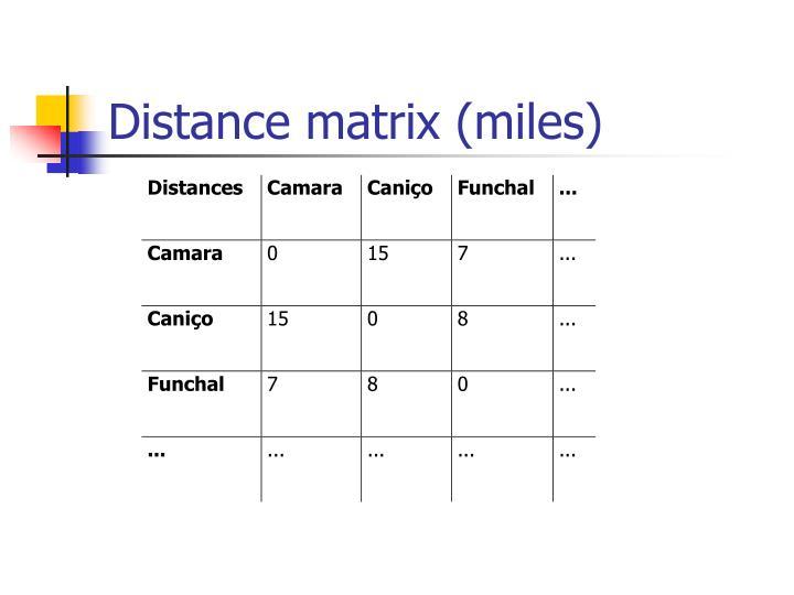 Distance matrix miles