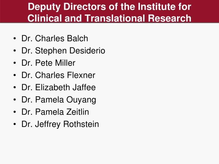 Deputy Directors of the Institute for