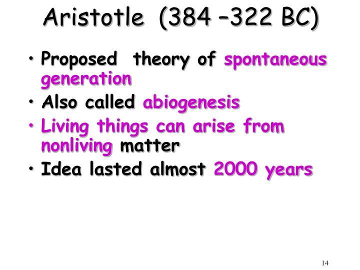 Aristotle  (384 –322 BC)