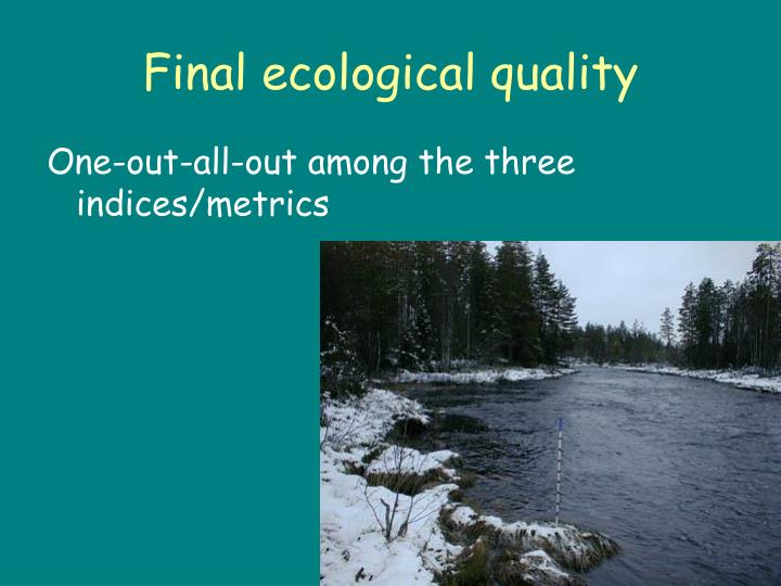 Final ecological quality