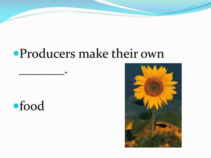 Producers make their own _______.