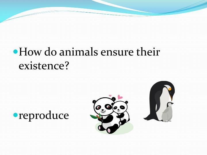 How do animals ensure their existence?