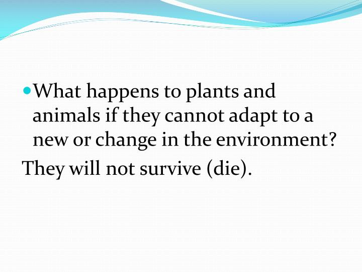 What happens to plants and animals if they cannot adapt to a new or change in the environment?