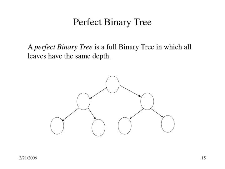 Perfect Binary Tree