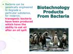 biotechnology products from bacteria2