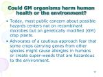 could gm organisms harm human health or the environment2
