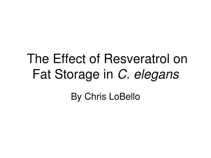 the effect of resveratrol on fat storage in c elegans n.