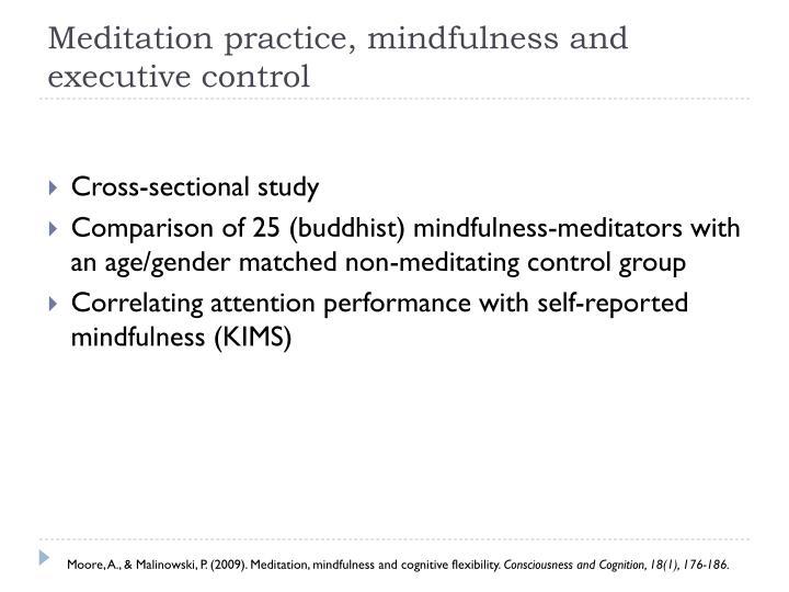 Meditation practice, mindfulness and executive control