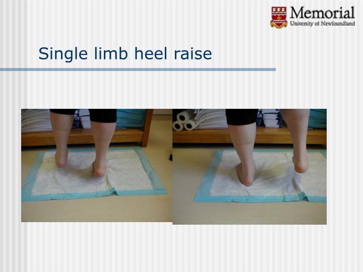 Single limb heel raise