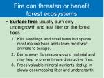 fire can threaten or benefit forest ecosystems