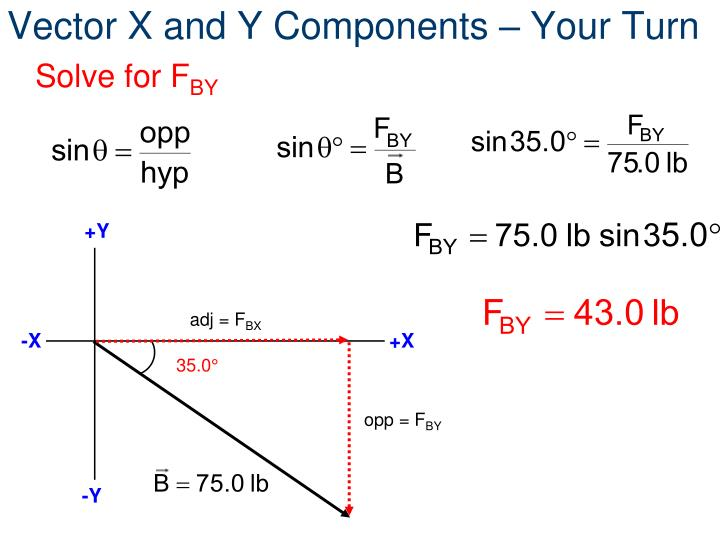 Vector X and Y Components – Your Turn