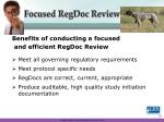 focused regdoc review