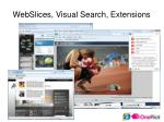 webslices visual search extensions