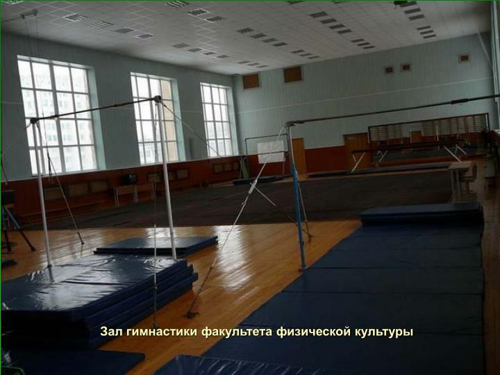 Зал гимнастики факультета физической культуры