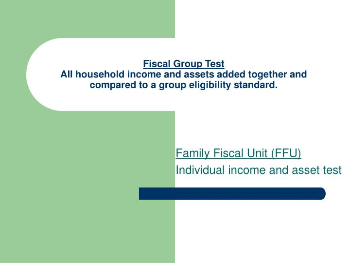 Fiscal Group Test