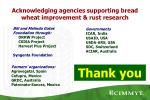 acknowledging agencies supporting bread wheat improvement rust research