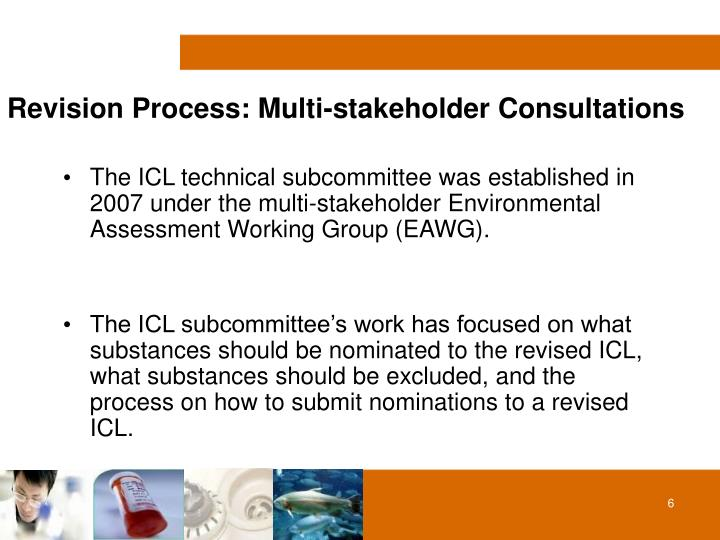 Revision Process: Multi-stakeholder Consultations