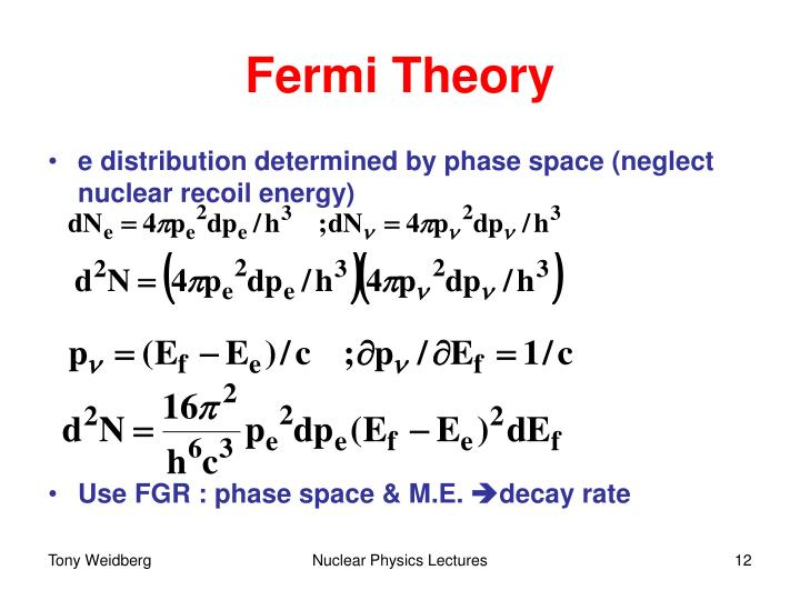 Fermi Theory