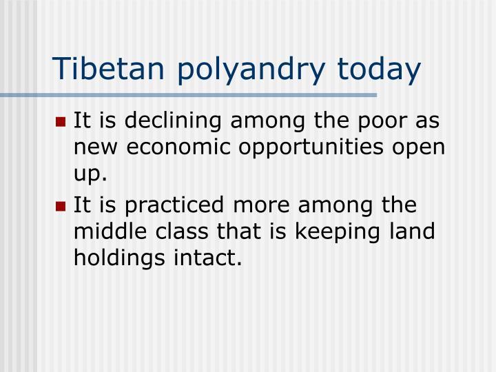 Tibetan polyandry today
