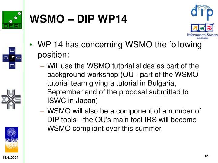 WSMO – DIP WP14