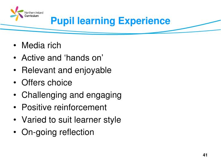 Pupil learning Experience