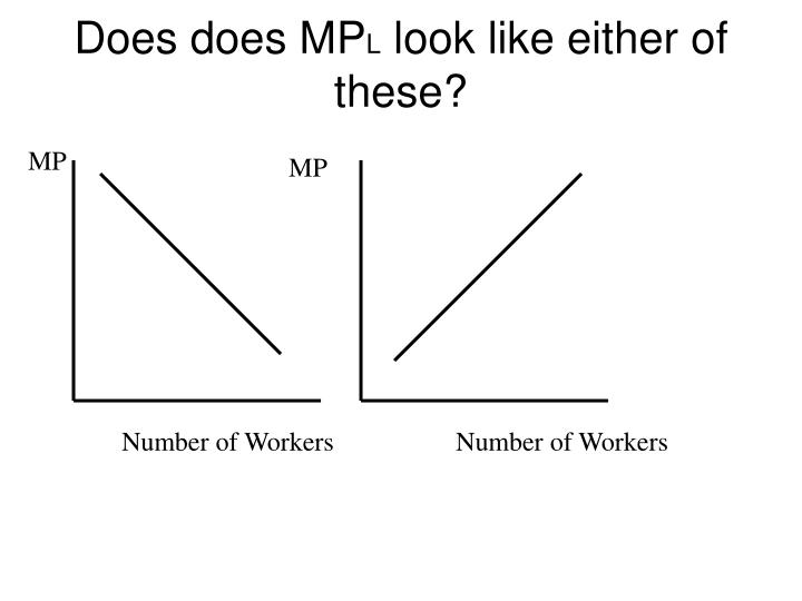 Does does MP