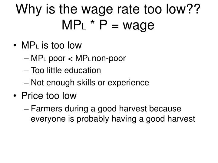 Why is the wage rate too low??