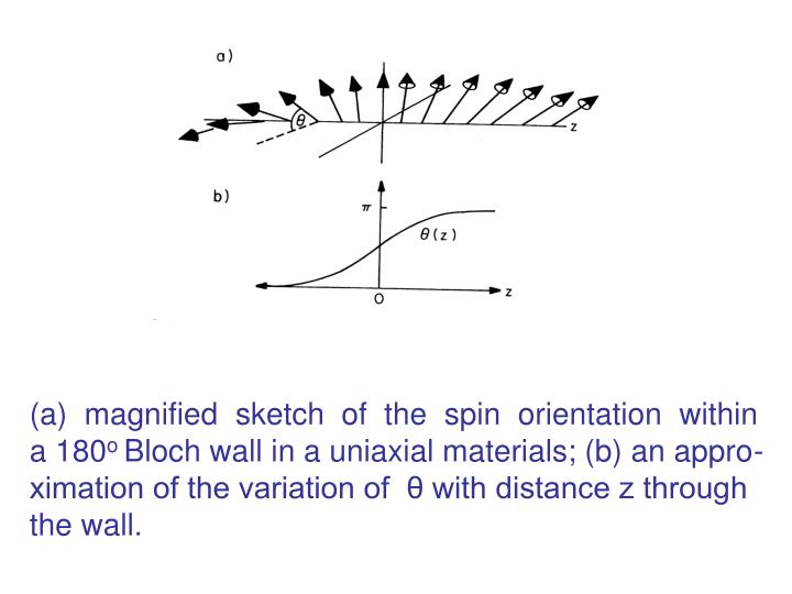 magnified  sketch  of  the  spin  orientation  within