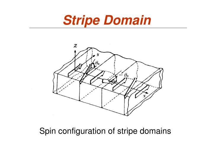 Stripe Domain