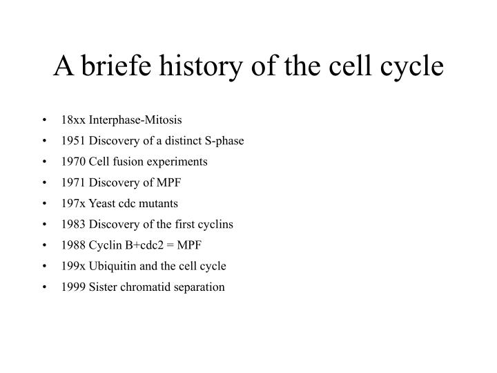 A briefe history of the cell cycle