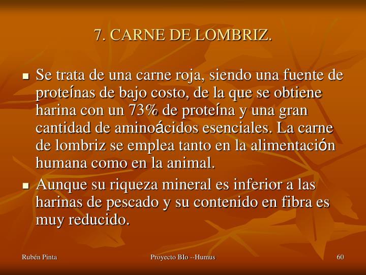 7. CARNE DE LOMBRIZ.