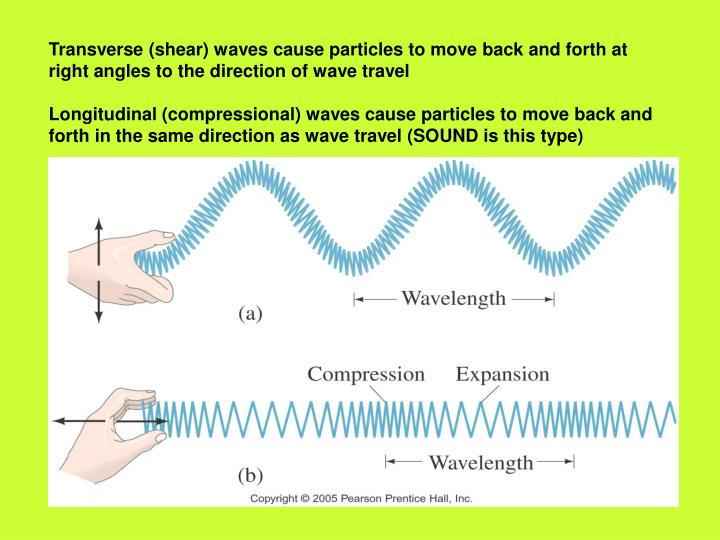 Transverse (shear) waves cause particles to move back and forth at right angles to the direction of wave travel