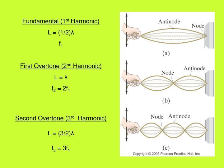 Fundamental (1