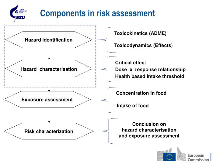 Components in risk assessment