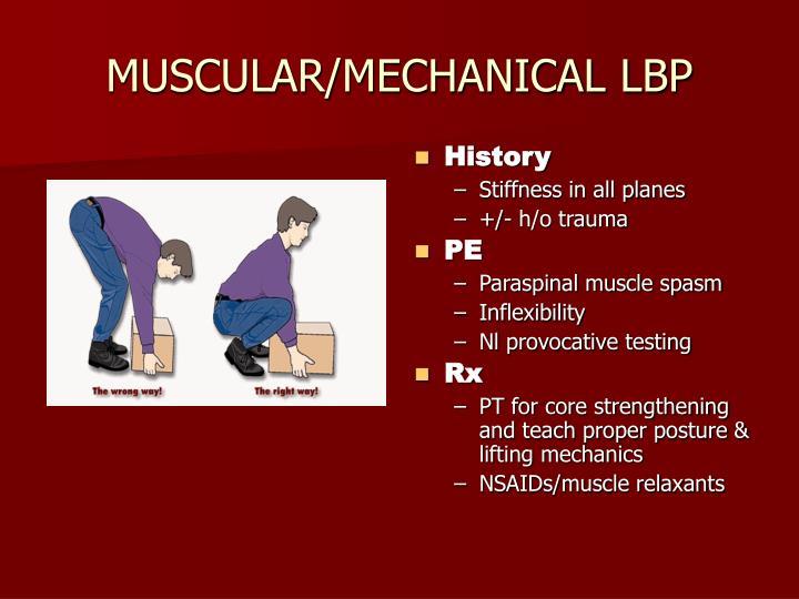 MUSCULAR/MECHANICAL LBP