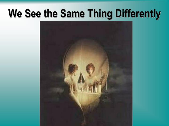 We see the same thing differently