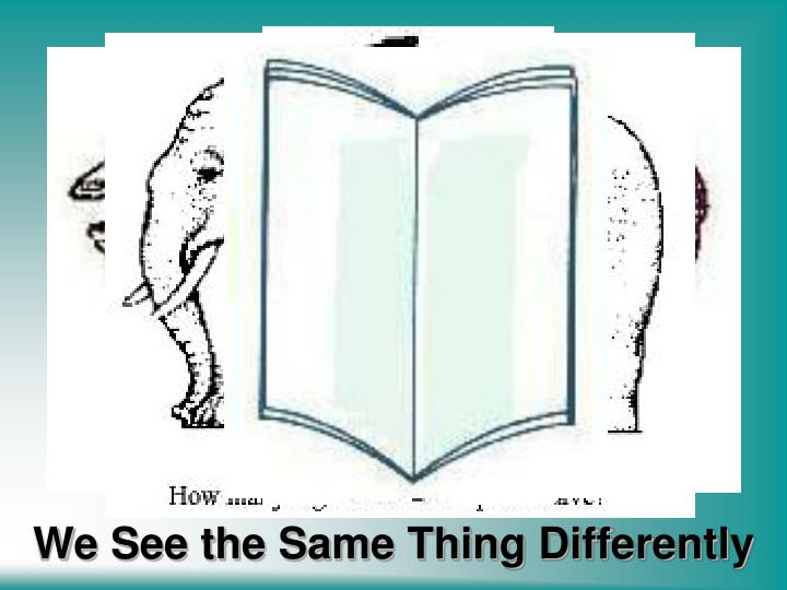 We see the same thing differently1