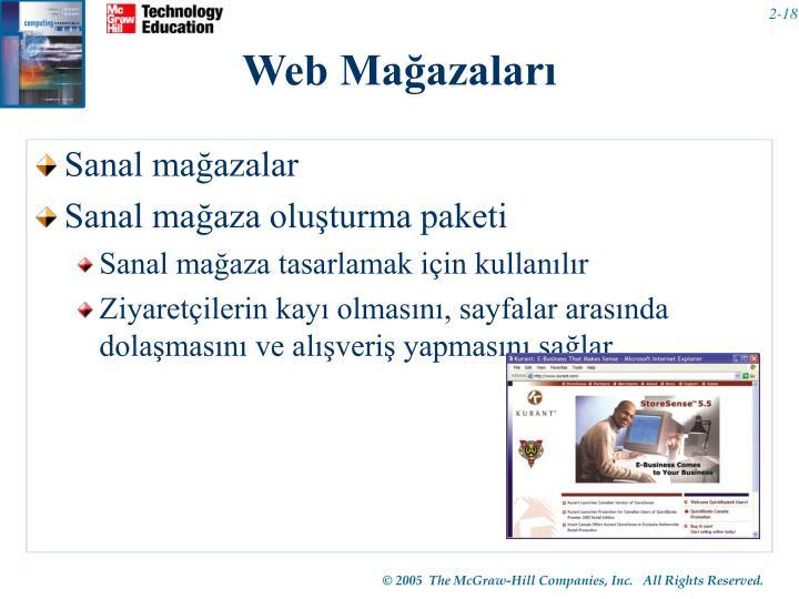 Web Mağazaları