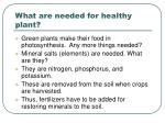 what are needed for healthy plant