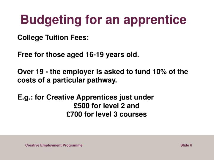 Budgeting for an apprentice