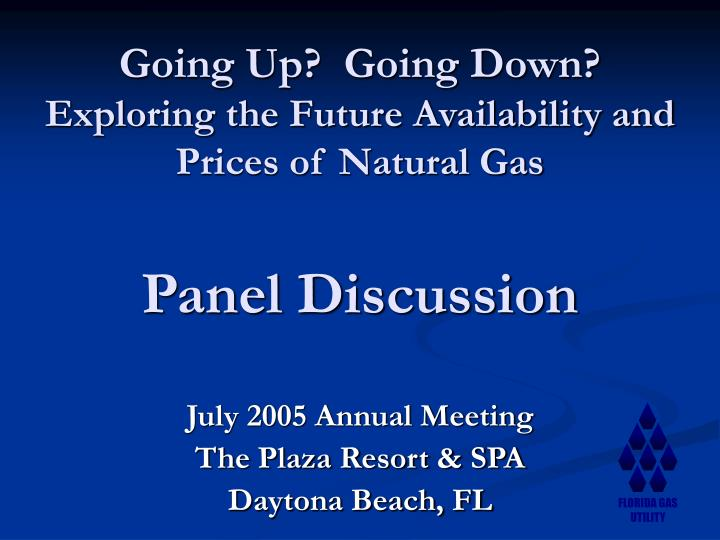 going up going down exploring the future availability and prices of natural gas panel discussion n.