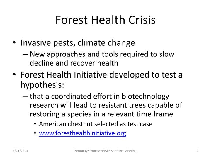 Forest health crisis