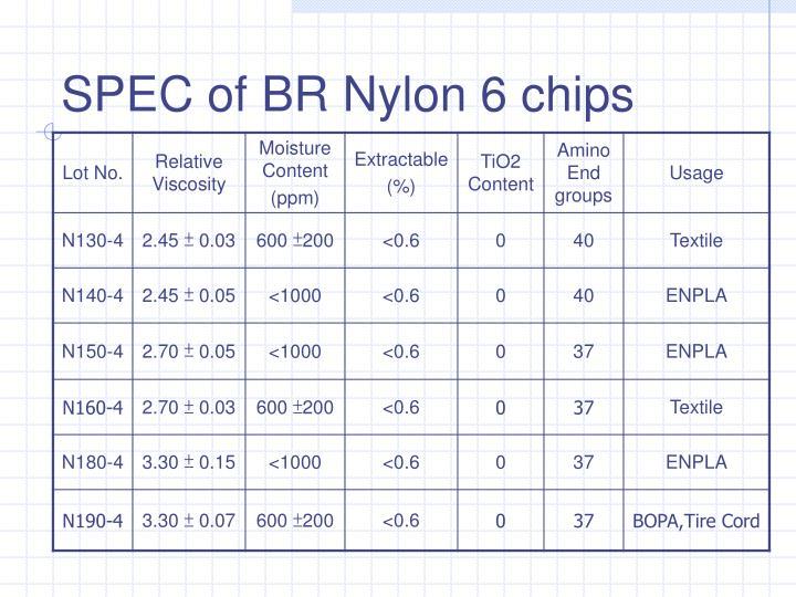 SPEC of BR Nylon 6 chips