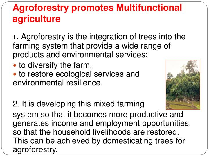 Agroforestry promotes Multifunctional agriculture